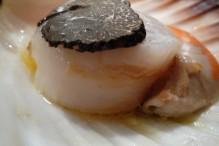 saint-jacques-aux-truffes